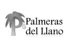 palmeras-del-llano-cliente-protocolo de familia-mesa familiar